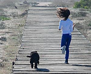 exercicio do cão de água português